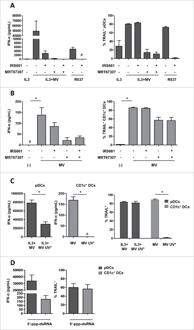 MV induces IFN-α and TRAIL expression following RLR activation in CD1c + DCs and <t>RLR/TLR7</t> activation in pDCs. (A) pDCs were pretreated or not with IRS661 (TLR7 inhibitor) or with MRT67307 (TBK1 and IKK-ε inhibitor) and then cultured with IL3, IL3+MV or <t>R837.</t> (B) CD1c + DCs were pretreated or not with IRS661 or MRT67307 and then cultured alone (−) or with MV. (C) pDCs were cultured with IL3+MV or with IL3+UV-inactivated MV (MV UV*) and CD1c + DCs were cultured alone (−), with MV or MV UV*. (D) pDCs and CD1c + DCs were exposed to 5′-ppp-dsRNA LyoVec, a RIG-I agonist. (A–D) IFN-α secretion was measured by ELISA. #, values are below the limit of detection of the kit (7 pg/mL). The expression of TRAIL by the indicated cells was determined by flow cytometry. Results are expressed as the mean ± SEM of three independent experiments. (A, B) * p