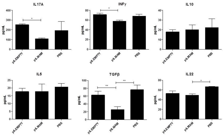 Cytokines secreted by reactivated lymphocytes from MLN in DSS-induced colitis model . Mice were orally administered with LL-pILMAM, LL-pILEMPTY or PBS 7 days before and during colitis induction. Colitis was induced by adding DSS in drinking water during 7 days (D0-D7). Then DSS was removed from drinking water and mice allowed to recover during 5 days (D7-D12). At D12 mice were killed, MLN withdrawn, cells were isolated and lymphocytes reactivated with antiCD3/anti-CD28 antibodies. Cytokine concentration in medium was monitored 48 h after reactivation by ELISA. * P
