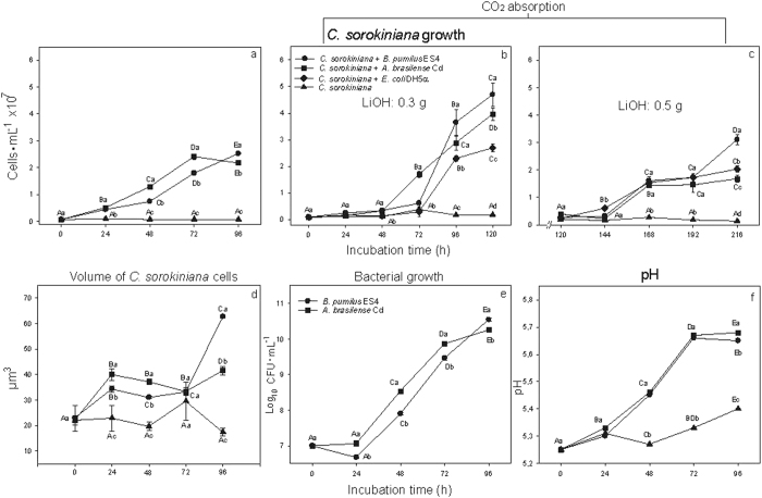 ( a ) Remote effect of emissions of the PGPB Azospirillum brasilense Cd and Bacillus pumilus ES4 and the control bacterium <t>Escherichia</t> coli <t>DH5α</t> on growth of the microalgae Chlorella sorokiniana , ( b ) growth in the presence of the CO 2 absorbant LiOH•H 2 O, 0.3 g and ( c ) 0.5 g. ( d ) Remote effect of emissions on the volume of C. sorokiniana cells, ( e ) Growth of the PGPB in the culture medium, and ( f ), Increase in pH in the medium. The control bacterium ( E. coli ) was used only in experiments measuring the potential effect of produced CO 2 on microalgae growth and metabolite production. Values on curves denoted by different capital letters differ significantly using one-way ANOVA combined with LSD post-hoc analysis at P