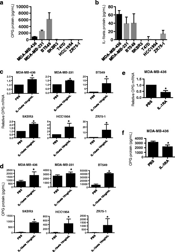 IL1B induces OPG secretion in breast cancer cell lines regardless of subtype and basal OPG protein levels. a Basal OPG and b IL1B protein levels were assessed by ELISA on supernatant collected from several different breast cancer cell lines, ( n ≥ 3). c Relative OPG mRNA measured by qRT-PCR and d OPG secreted protein levels increase upon treatment with IL1B (10 ng/mL) in several different breast cancer cell lines, ( n ≥ 3). e OPG RNA and f OPG secreted protein levels decrease upon treatment with PBS or IL-1B receptor antagonist IL-1RA (50 ng/mL) of MDA-MB-436 cells ( n = 4). Data are represented by mean ± SD. Asterisks indicate statistical significance ( p