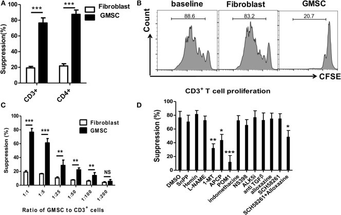 GMSCs inhibit T cell proliferation through <t>CD39/CD73</t> and IDO signals . (A,B) Human CD3 + T cells were prepared from PBMC and labeled with CFSE. T cells were then stimulated with irradiated non T cells (1:4) and anti-CD3 (1 µg/ml) for 4 days. Human fibroblast cells were used as a negative control. The T cell proliferation was determined by Flow cytometry. A representative experiment is shown in panel (B) . (C) GMSCs were cocultured with CD3 + T cells as described above. Graded doses of GMSCs were added to T cells for 4 days. (D) GMSC were cocultured with CD3 + T cells, ratio of GMSC to T cells was 1:5. Different reagents as described above were added to the coculture system, and the suppression rate was determined by Flow cytometry. The same ratio of GMSC and reagents were added as in panels (C,D) . CFSE dilution was determined by FACS. Data are summarized from three replicate experiments, represented as mean ± SEM. ** p