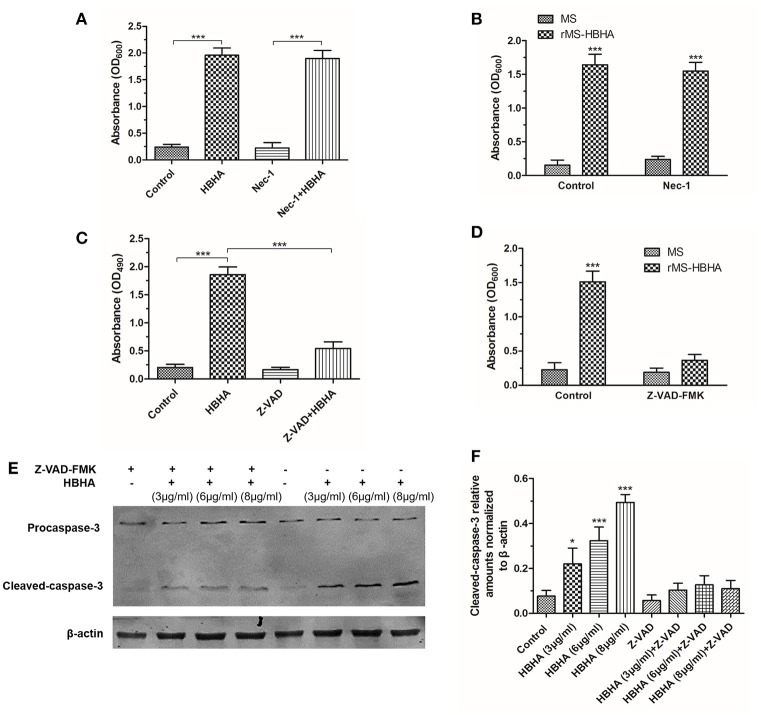 HBHA treatment induced apoptosis on A549 cells through activation of caspase-3. (A) A549 cells were treated with HBHA (8 μg/ml) for 24 h in the presence or absence of RIPK1 inhibitor Nec-1 (30 μM), and LDH release was detected. ( *** P