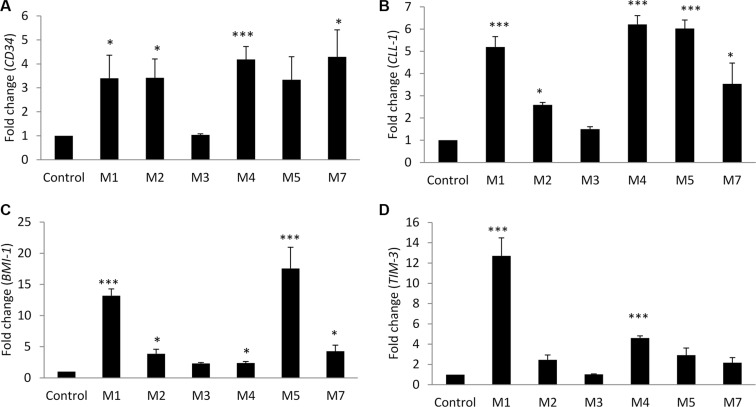 Leukemic stem cell genes expression analysis by qRT-PCR in bone marrow samples from AML patients versus control subjects Gene expression of: ( A ) CD34 , ( B ) CLL-1 , ( C ) BMI-1 , and ( D ) TIM-3 . Fold changes in the respective gene expression are expressed as mean ± S.E.M., n = 10 control and 40 patients (M1 = 5, M2 = 7, M3 = 5, M4 = 16, M5 = 4, M7 = 3). One-way ANOVA was used followed by the Newman-Keuls post-test ( ***p