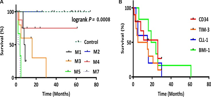 Kaplan-Meier survival analysis ( A ) Kaplan-Meier plot representing the overall survival for AML groups M1, M2, M3, M4, M5 and M7. ( B ) Kaplan-Meier plot representing the correlation between LSC genes <t>CD34</t> , TIM-3 , CLL-1 and BMI-1 expression and survival. CD34 ( p = 0.0022), TIM-3 ( p = 0.0035), CLL-1 ( p = 0.0006), BMI-1 ( p