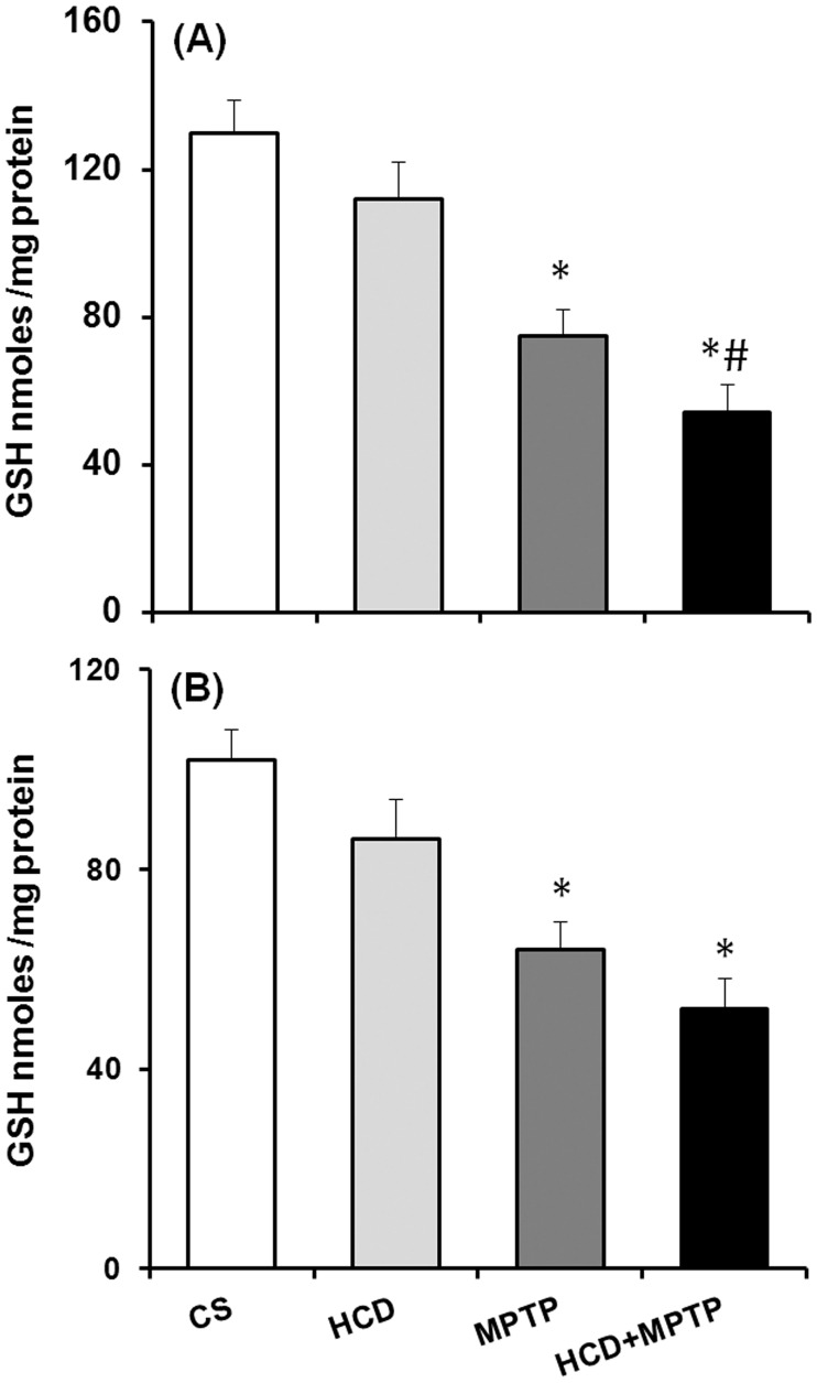 Effect of hypercholesterolemia on nigrostriatal reduced glutathione (GSH) level in Parkinsonian mice. (A) Striatum and (B) substantia nigra regions of brain were used for estimating GSH levels by employing a sensitive HPLC-ECD system. Data are expressed as nmol/mg tissue and represented as mean ± S.E.M. *p ≤ 0.05 as compared with control and #p ≤ 0.05 as compared with MPTP alone treated group (n = 5).