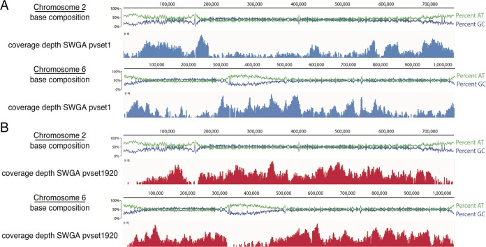 Plasmodium vivax chromosomal coverage following SWGA using primer set pvset1 (A) or pvset1920 (B). The base compositions of chromosomes 2 and 6 were visualized in Geneious (version 9.1) using the P. vivax Sal-1 reference genome; green and blue lines represent percentages of AT and GC content, respectively, plotted for 25-bp windows across the chromosome (scale shown above the graph). Shown in blue and red below are the corresponding MiSeq read coverage depths using primer sets pvset1 and pvset1920, respectively. Coverage plots were generated using IGVTools (version 2.3.40) and are shown on a log scale with maximum read depth indicated in the upper left corner of the plot.
