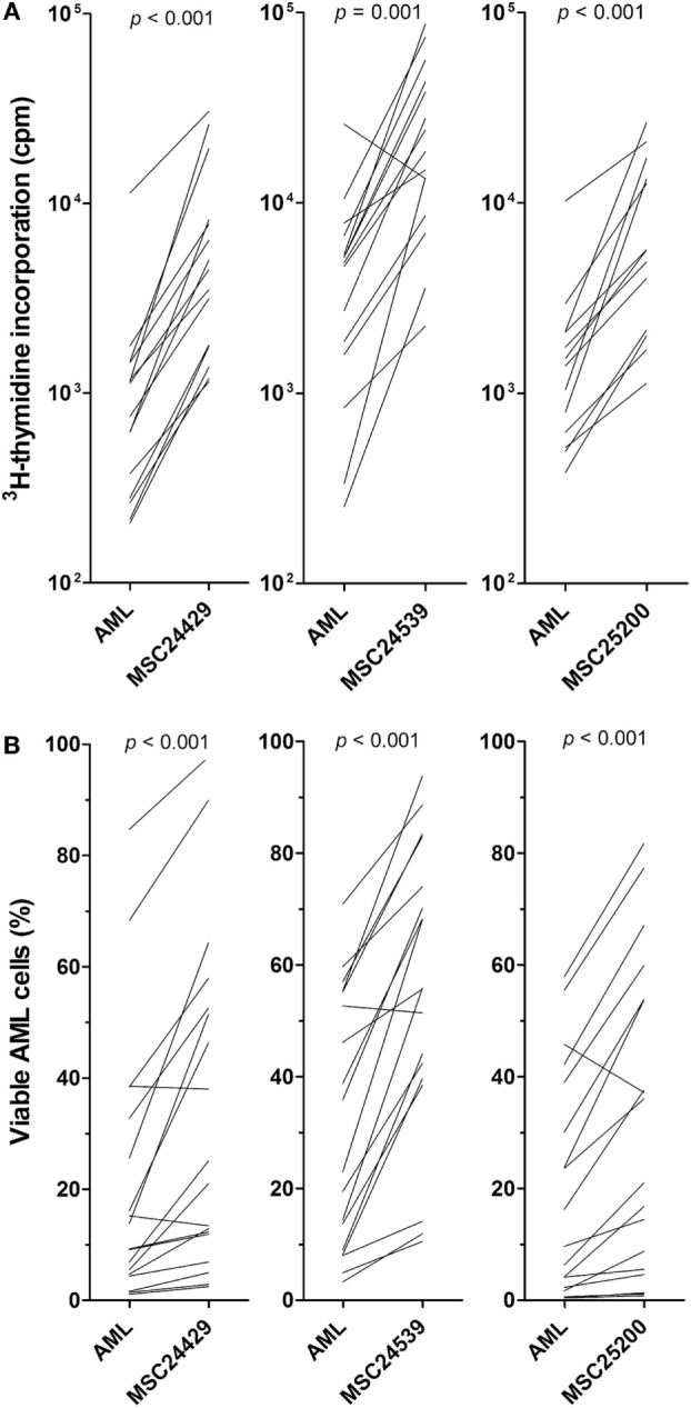 The effect of normal bone marrow mesenchymal stem cells (MSCs) on in vitro proliferation and viability of primary human acute myeloid leukemia (AML) cells; a comparison of MSCs derived from three healthy donors (MSC24429, MSC24539, MSC25200) . Primary human AML cells derived from 18 consecutive/unselected leukemia patients were cocultured with normal MSCs from the three donors. The MSCs were initially cultured for 3 days to allow them to establish adherent in vitro proliferation; primary human AML cells were then added and both leukemia cell proliferation and viability were assayed after additional 3 days of culture. [ (A) , upper part] Proliferation was assayed as 3 H-thymidine incorporation. The results for each patient are presented as nuclear thymidine incorporation (counts per minute, cpm). The p -value for the statistical comparison of the overall results is given at the top of the figure for each of the individual MSC. Each line represents the results for one patient. [ (B) , lower part] Leukemia cell viability was assayed by the Annexin V-PI flow cytometric assay. The p -value for the statistical comparison of the overall results for each of the MSCs is given at the top of the figure for the MSCs. Each line represents the results for one patient.