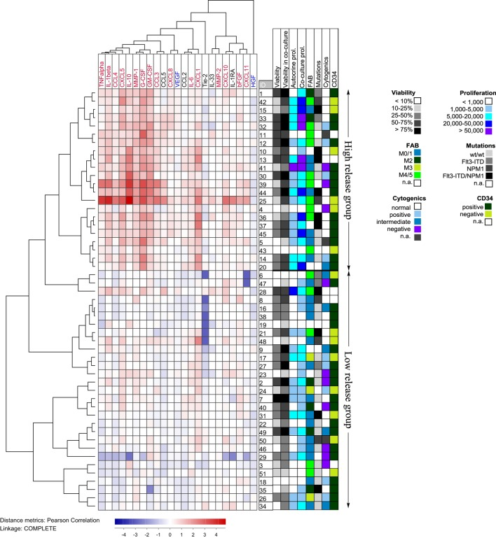 Hierarchical clustering analysis based on the ratio of cytokine levels in acute myeloid leukemia (AML)-mesenchymal stem cell (MSC) cocultures divided by the concentration sums of AML cells and <t>MSCs</t> cultured alone; primary AML cells were derived from 51 patients and cocultured with <t>MSC24539</t> . Each horizontal row in the figure represents the observation for one patient, and the vertical columns represent the observations for the soluble mediators. Red indicates supra-additive effects in coculture. Likewise cytokines marked in red showed supra-additive effect on the total patient cohort, whereas mediators marked in blue showed higher levels in MSC cultures alone than in coculture. The patients clustered into two main groups (see right part of the figure) indicating high and low relative coculture cytokine levels, respectively. The figure also shows the distribution of various biological characteristics between the patient subsets (AML cell viability after 72 h of culture in medium alone and in coculture, proliferative capacity in medium alone and in coculture, FAB classification, genetic abnormalities, and expression of the CD34 stem cell marker).