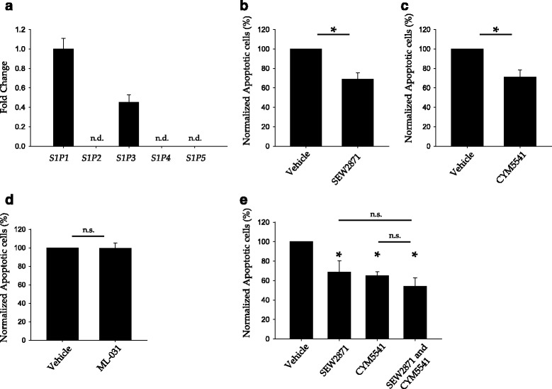 Pharmacological activation of S1P1 or S1P3 protects endothelial cells against serum/GF deprivation-induced cell death. a Relative expression of S1PR in HUVEC. Total RNA was analyzed by qPCR using Taqman probes for S1PR and normalized against GAPDH expression. S1P1 expression was chosen as reference. Error bars correspond to SD, n.d., not detected. b – e HUVEC were grown up to confluence in full medium, then switched to serum/GF deprivation medium with SEW2971 5 μM b and e , ML-031 5 μM c and e or/and CYM5541 5 μM d and e for 18 h and then analyzed by flow cytometry. The percentage of apoptotic cells (AnnexinV + and 7-ADD − ) was normalized versus serum/GF starvation condition. Error bars correspond to SEM. In b , n = 9, Mann-Whitney U -test p