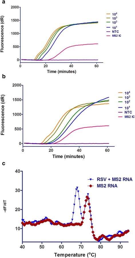 Sensitivity of RT-SIBA for the detection of respiratory syncytial virus (RSV). a RSV-A <t>RNA</t> and b RSV-B RNA. c Melting curve profiles of RSV (1000 copies of RSV-A RNA) and <t>MS2</t> RNA in the same reaction tube. MS2 was used as the internal control (IC, 2000 copies per reaction). No template control (NTC)