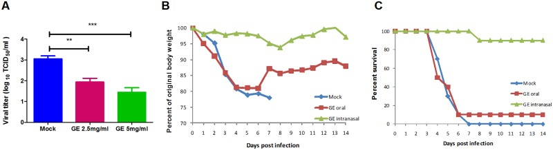 Antiviral activity of ginseng extract (GE) against 2009 pandemic <t>H1N1</t> <t>influenza</t> A virus infection. (A) A dose dependent reduction in viral titer was observed when MDCK cells were infected with GE-pretreated A/Nanchang/8002/2009 (H1N1) virus. Protective effect of GE was observed on (B) weight loss and (C) survival of mice infected with A/Nanchang/8002/2009 (H1N1) virus. GE oral_ mice treated with 80mg/kg of GE by oral route. GE_ mice were infected with a mixture of 10 3 EID 50 of virus and GE. Mock_ there was no GE treatment given. *** P