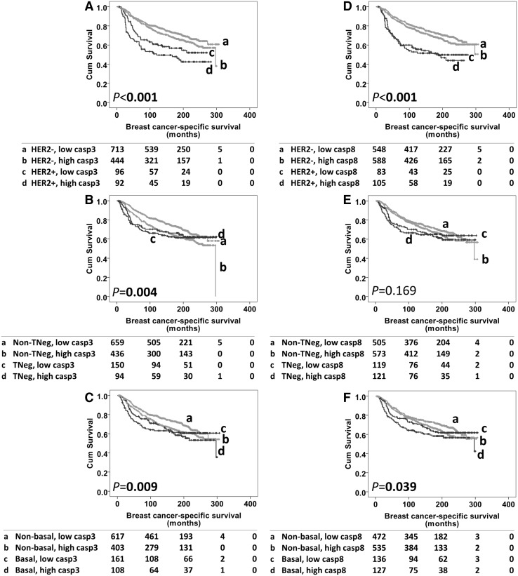 Kaplan–Meier survival curves for breast cancer specific-survival based upon caspase-3/caspase-8 expression, showing as different subgroups. Panel A caspase-3 expression with HER2 negative and HER2 positive diseases. Panel B caspase-3 expression with non-triple negative and triple-negative diseases. Panel C caspase-3 expression with non-basal like diseases and basal-like diseases. Panel D caspase-8 expression with HER2 negative and HER2 positive diseases. Panel E caspase-8 expression with non-triple negative and triple-negative diseases. Panel F caspase-8 expression with non-basal like diseases and basal-like diseases