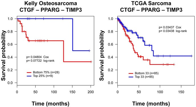 A CTGF-PPARγ-TIMP3 signature correlates with clinical outcome in osteosarcoma Kaplan-Meier survival curves for CTGF, PPARγ and TIMP3 illustrating that higher CTGF, and PPARγ and low TIMP3 expression correlates with worse outcomes, and the reverse pattern of expression correlates with better outcome in two independent datasets. Distribution of patients for this data set has been previously published. Survival probability and P values calculated using Kaplan-Meier and Cox proportional hazards methods. DFS = Disease-free survival in Kelly, OS = Overall survival in TCGA.