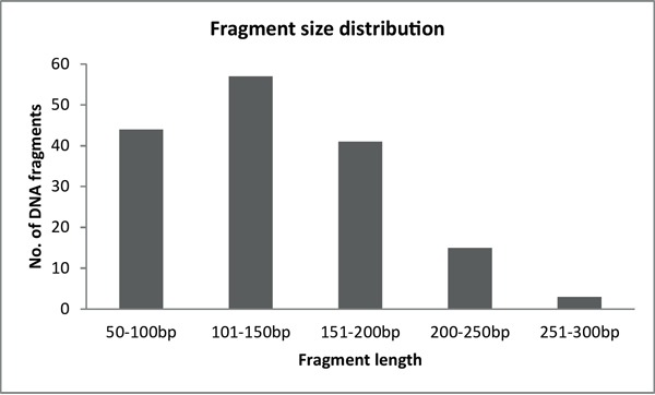 Fragment size distribution of BRCA1-2 samples after the enzymatic fragmentation of multiplex PCR products