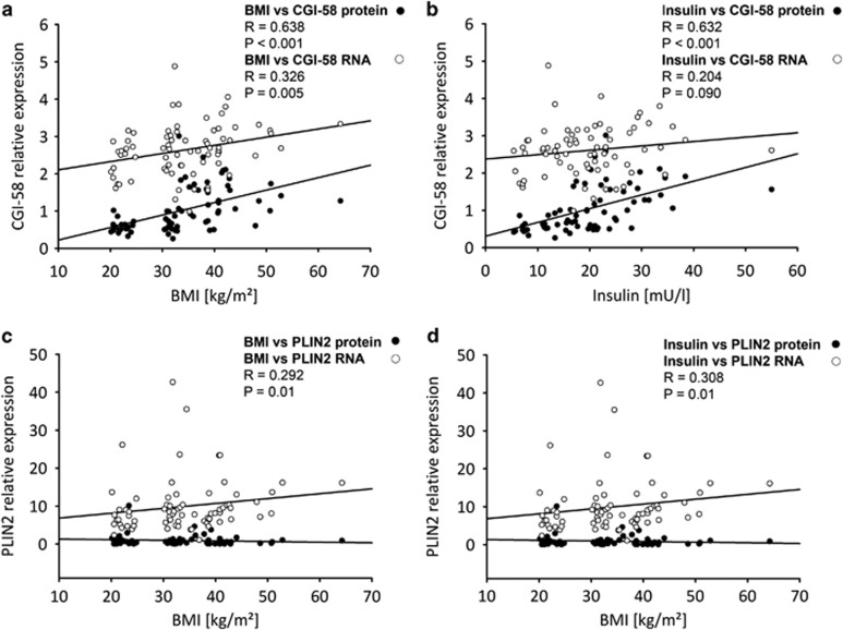 Association of placental CGI-58 with maternal metabolic parameters. Correlation analysis was performed between CGI-58 mRNA or protein expression in placenta tissue and maternal pre-pregnancy BMI ( a ) or maternal plasma insulin ( b ). PLIN2 mRNA and protein levels were correlated with ( c ) maternal pre-pregnancy BMI and maternal plasma insulin levels ( d ). Black circles (•) protein expression on thr open circles (○) mRNA expression. Spearman correlation was defined as significant if P -values were