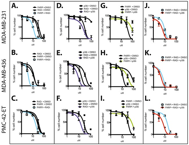 Combination of RAD51, PARP and p38 inhibitors against TNBC cell lines The three TNBC cell lines MDA-MB-231 (top row), MDA-MB-436 (middle row) and PMC42-ET (bottom row) were used for dose response studies using three molecular inhibitors targeting RAD51 (B02, RAD51i), PARP (ABT-888, PARPi) and p38 (LY2228820, p38i). Dose curves for the single drugs were performed using 0-100 μM escalating doses. The combinations were carried out as follows: A–C. RAD51i escalating doses 0-100 μM with 2.5 μM of PARPi; D–F. RAD51i escalating doses 0-100 μM with 10 μM of p38i; G–I. p38i escalating doses 0-100 μM with 2.5 μM of PARPi J–L. RAD51i escalating doses 0-100 μM with 2.5 μM PARPi alone or with 10 μM of p38i. All experiments were performed over 72 hours in triplicate and graphs represent line of best-fit non-linear regression +/−SEM.