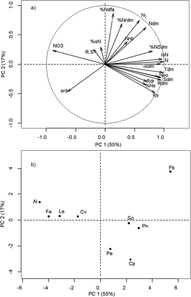 (a) Factor loadings for the variables measured on nine legume species grown under low soil N availability, for the first two axes of the principal component (PC) analysis. The percentage of the total variance explained by the first two principal components is shown in parentheses. (b) Projections of the different species on the first two axes of the principal component analysis. Variables: Shoot dry matter (Sdm), root dry matter (Rdm), total dry matter (Tdm), root:shoot ratio (R.S), initial seed dry matter (isdm), initial seed N (isN), N content in seeds (%sN), seed reserve depletion (srd), root lateral expansion rate (Rlr), root depth penetration rate (Rdr), nodule number (Nnb), nodule dry matter (Ndm), plant N (N), percentage of plant N derived from seeds (%Ns), N 2 fixed (N 2 ), percentage of exogenous N derived from air (%Ndfa), soil N uptake (Nso), N content in shoot dry matter (%NSdm), N content in root dry matter (%Nrdm), remaining N-NO 3 − in soil (NO 3 − ). Species: Alfalfa (Al), Fenugreek (Fe), Lentil (Le), Common vetch (Cv), Soybean (So), Pea (Pe), Chickpea (Cp), Peanut (Pn) and Faba bean (Fb).