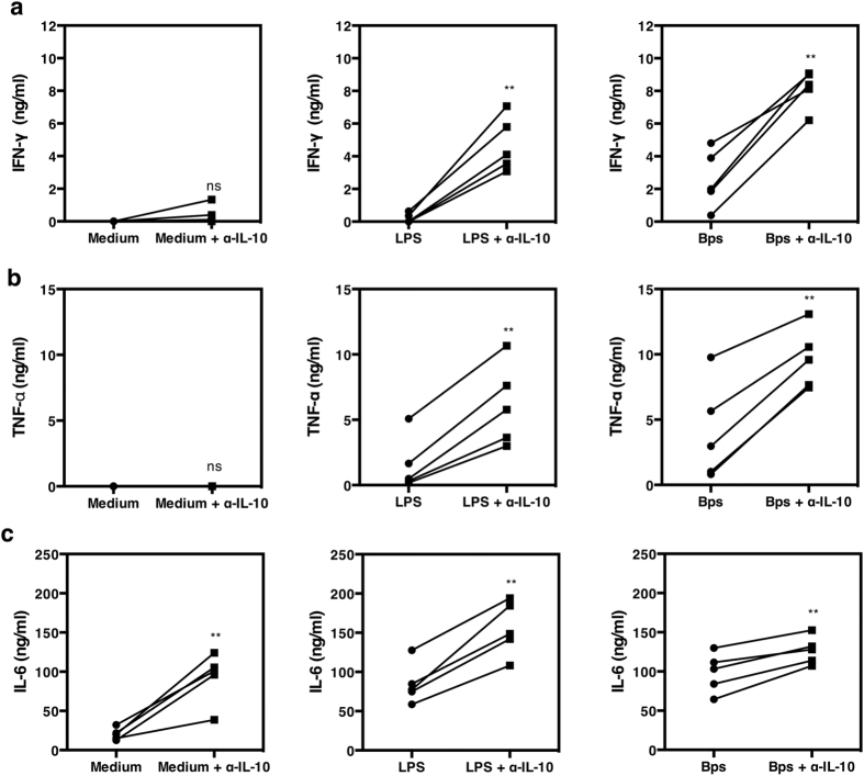 Neutralization of IL-10 increases IFN-γ, TNF-α and IL-6 production in individuals with DM. PBMCs (n = 5) were incubated with 10 μg/ml E. coli LPS, killed B. pseudomallei (30:1 ratio) or medium alone in the presence or absence of anti-IL-10 mAb. IFN-γ ( a ), TNF-α ( b ) and IL-6 ( c ) was measured by ELISA from collected supernatant after 48 hours in vitro . Each symbol represents data from an individual. The values from the same individual in the presence or absence of anti-IL-10 mAb are joined by a line. Statistical significance was determined using paired T test; ns, non significant, * p