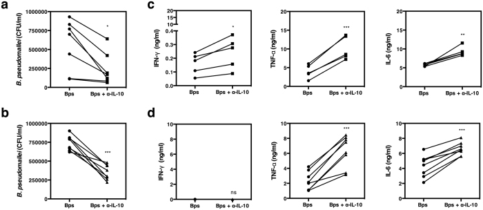 Neutralization of IL-10 increases the killing of B. pseudomallei by healthy individuals and individuals with DM. PBMCs from healthy individuals (n = 7) ( a ) and individuals with DM (n = 8) ( b ) were incubated with medium, live B. pseudomallei at an MOI of 1 in the presence or absence of 3 ug/ml of anti-IL-10 mAb for 6 hours. The number of live B. pseudomallei was assessed by colony forming unit assay. The cultured supernatants of healthy individuals (n = 5) ( c ) and individuals with DM (n = 8) ( d ) were assayed for IFN-γ, TNF-α and IL-6 by ELISA. Each symbol represents data from an individual. The values from the same individual in the presence or absence of anti-IL-10 mAb are joined by a line. Statistical significance was determined using paired T test; ns, non significant, * p