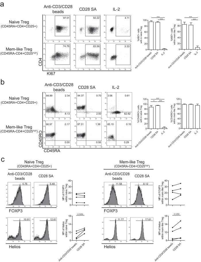 CD28-superagonist stimulation drives both naïve and memory Treg proliferation. Flow cytometry of FACS-sorted human naïve (CD4+CD45RA+CD25+) and memory (CD4+CD45RA-CD25 high ) Treg that were stimulated with CD28-superagonist(CD28 SA) or anti-CD3/CD28 mAb coated-microbeads in the presence of rhIL-2. As a control Treg cultured in the presence of rhIL-2 only were included. Dotplots show intracellular staining of KI67 ( a ), isoform switch of CD45RA and CD45RO ( b ), and intracellular expression of FOXP3 and Helios ( c ). Numbers within ( a ) and ( b ) indicate the percentage of positive cells, and numbers within the histogram ( c ) indicate the MFI values. A representative example of n = 4 individual experiments conducted with cells obtained from different donors is shown. Aggregate data are shown in the figures at right side of the flow cytometry plots. Kruskal-Wallis followed by Dunns post-hoc test ( a,b ) and Wilcoxon signed-rank test ( c ) were used for statistical analysis. *P