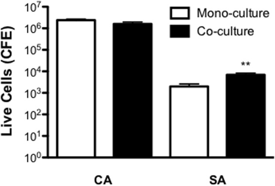 Inter-kingdom interactions decrease Staphylococcus aureus sensitivity to miconazole. <t>Biofilms</t> were grown for 24 h on a cellulose matrix based hydrogel model before being washed with PBS and treated with 40 mg/L of miconazole for a further 24 h. After treatment, the cellulose matrix was removed and sonicated to dislodge the biofilm biomass. Live/dead PCR was then used to extract DNA and quantify total and live CFE. Data is presented as the CFE of live cells comparing treated mono- and dual-species biofilms. Data represents duplicate samples from three independent time points with significance achieved with ∗∗ p