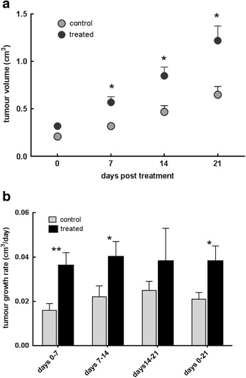 a Tumour volume in MMTV-NEU-NT tumour-bearing control mice and mice treated with β-OHB (500 mg/kg), injected ip daily for 3 weeks. Control: N = 25 tumours (18 mice), Treated: N = 23 tumours (19 mice); * p
