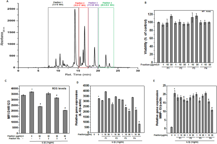 <t>SBE</t> Fraction 4 (F4) showed potent chondroprotective effects in human OA chondrocytes. ( A ) <t>HPLC</t> chromatogram of ethanolic extract of S. baicalensis. Fractions were collected based on indicated retention time. ( B ) SBE fraction (s) was not toxic to human OA chondrocytes. Human OA chondrocytes were treated with indicated concentration (1–50 μg/ml) of SBE fraction (F1 or F2 or F3 or F4) for 24 h and cells viability were measured by MTT assays. Chondrocytes treated with 0.1% DMSO served as control. Viability was expressed relative to control cells. Data points represent mean ± SD from three subjects. ( C ) SBE fraction 4 (F4) inhibited IL-1β induced ROS production in OA chondrocytes. Human OA chondrocytes were treated with SBE fraction (F1 or F2 or F3 or F4) (50 μg/ml) for 2 h, then stained with DHR-123 (5 μM) for 0.5 h at 37 °C, and stimulated with IL-1β (1 ng/ml) for 5 minutes at 37 °C. Fluorescence emission was measured at 535 nm. Bar graph shows relative fluorescence units indicating ROS levels. ( D–E ) SBE fraction 4 (F4) inhibited IL-1β induced mRNA expression of IL-6 and MMP-13 in OA chondrocytes. Primary human OA chondrocytes were pre-treated with SBE fraction (s) for 2 h followed by treatment with IL-1β (1 ng/ml) for 16 h. At the end of treatment chondrocytes were harvested, total RNA were isolated, reverse transcribed to cDNA and mRNA expression of IL-6 ( D ) and MMP-13 ( E ) were measured by quantitative PCR using the TaqMan assay system. Expression of β-actin was used as endogenous expression control. Bar graph represent mean ± SD from three subjects **p ≤ 0.01, as compared to control, # ≤ 0.01, as compared to IL-1β.