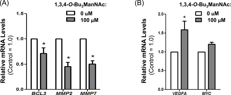 RT-PCR analysis of SW1990 cells treated with and without 100 μM of 1,3,4- O -Bu 3 ManNAc showed ( A ) a significant decrease in expression of STAT3 associated genes BCL3, MMP2 and MMP7 whereas ( B ) VEGFA and MYC, which can also be regulated by STAT3, showed increased expression (VEGFA) or was not affected (MYC). At least 3 biological replicates were carried out for each experiment with data expressed as mean ± standard error mean (SEM). * indicates a p value of