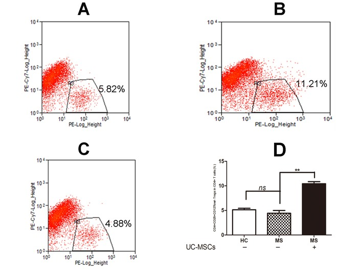 UC-MSCs significantly improved the frequency of Tregs among resting CD4 + T cells from MS A , B , C . Representative dot plot for CD25 + CD127 low/− Tregs among resting CD4+ T cells in cultured PBMCs of healthy donors (A), MS patients (B) following 3-day co-culture without UC-MSCs and (C) with UC-MSCs (UC-MSCs:PBMCs=1:5). D . Bar graph showing that the frequency of CD4 + CD25 + CD127 low/− Tregs among resting CD4+ T cells in PBMCs of MS was significantly increased following a 3-day co-culture with UC-MSCs compared to controls without UC-MSCs. No significant differences in the frequency of CD4 + CD25 + CD127 low/− Tregs were detected in naïve healthy donors and naïve MS patients. The data were expressed as mean ± SD of four experiments. **p