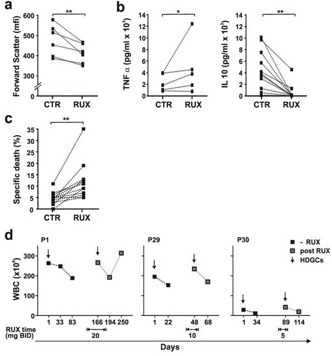 Effect of Ruxolitinib on DEX-mediated death in stimulated CLL cells in vitro and in vivo Purified CLL cells were stimulated with IL2 and Resiquimod in the presence or absence of dexamethasone (30 μM) or ruxolitinib (0.5 μM). a. Size changes of viable 7AAD- cells (median of forward scatter parameter (mfi)) were determined by flow cytometry after 48 h. Decreased size due to activation in the presence of ruxolitinib (RUX) is indicated for each patient sample by the lines. b. After 48 h, levels of TNFα (left panel, n = 5) and IL10 (right panel, n = 11) in the culture supernatants of 2S cells in the presence and absence (CTR) of RUX were measured by ELISAs. c. After 48 h, specific death was calculated from the difference between the percentages of 7AAD- cells in control and DEX-treated samples 48 h after RUX treatment ( n = 12). d. Changes in circulating lymphocytes (WBC) as a measure of clinical response are shown for 3 patients 1 month after treatment with high-dose glucocorticoids in the presence or absence of Ruxolitinib at the doses indicated in the graphs. *, p