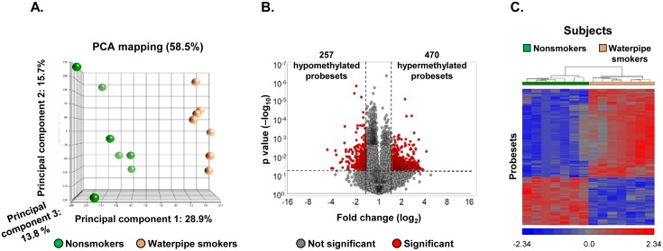 Genome-wide methylation differences of Small Airway Epithelium (SAE) DNA of waterpipe smokers vs nonsmokers. The data is derived from analysis of n = 7 nonsmokers and n = 7 waterpipe smokers. A . Principal component analysis using all HELP assay probesets corrected for covariates as input dataset. Shown are the first 3 principal components representing the largest variability among the groups. Each circle represents an individual subject (green = nonsmokers, orange = waterpipe smokers). B . Volcano plot. Assessment of differential DNA methylation of SAE for all probesets comparing waterpipe smokers vs nonsmokers; y-axis, negative log 10 of p value; x-axis, log 2 -transformed fold-change; red dots are probesets with differential DNA methylation, gray dots are probesets without differential methylation. Differentially methylated probesets with p