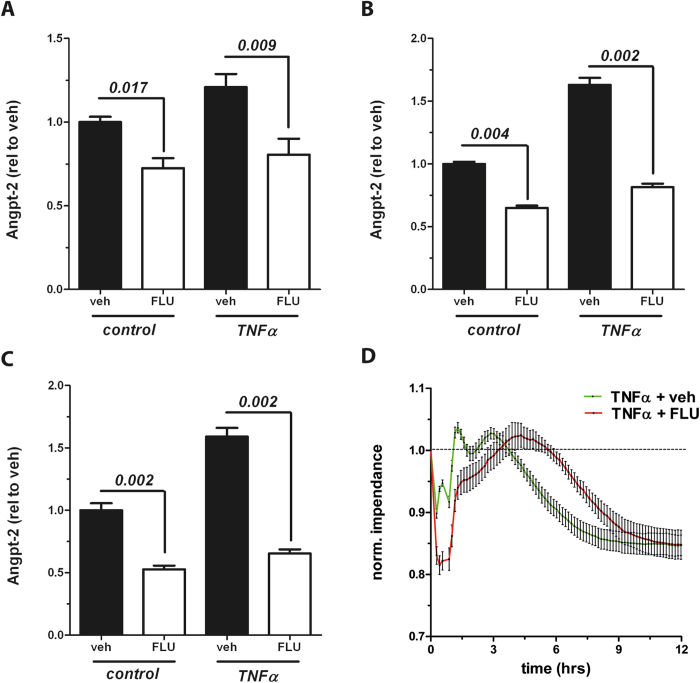 Flunarizine reduces Angiopoietin-2 (Angpt-2) after stimulation in vitro . Human umbilical vein endothelial cells (HUVECs) were stimulated with 10 ng/mL tumor necrosis factor α (TNFα) or control after 1 h pretreatment with either 10 μM Flunarizine (FLU) or vehicle and the concentration of Angpt-2 in the supernatant was determined by enzyme-linked immunosorbent assay (ELISA) ( A ) after six hrs of stimulation (n = 6) ( B ) after 12 hrs of stimulation (n = 6) and ( C ) after 24 hrs of stimulation (n = 6) ( D ) Real-time transendothelial electrical resistance (TER) from HUVECs, who were pretreated for 1 h with 10 μM Flunarizine (FLU) or vehicle and stimulated with 10 ng/mL TNFα, was recorded with an electric cell-substrate impedance sensing (ECIS) device (ibidi). Columns are presented as mean ± SEM.