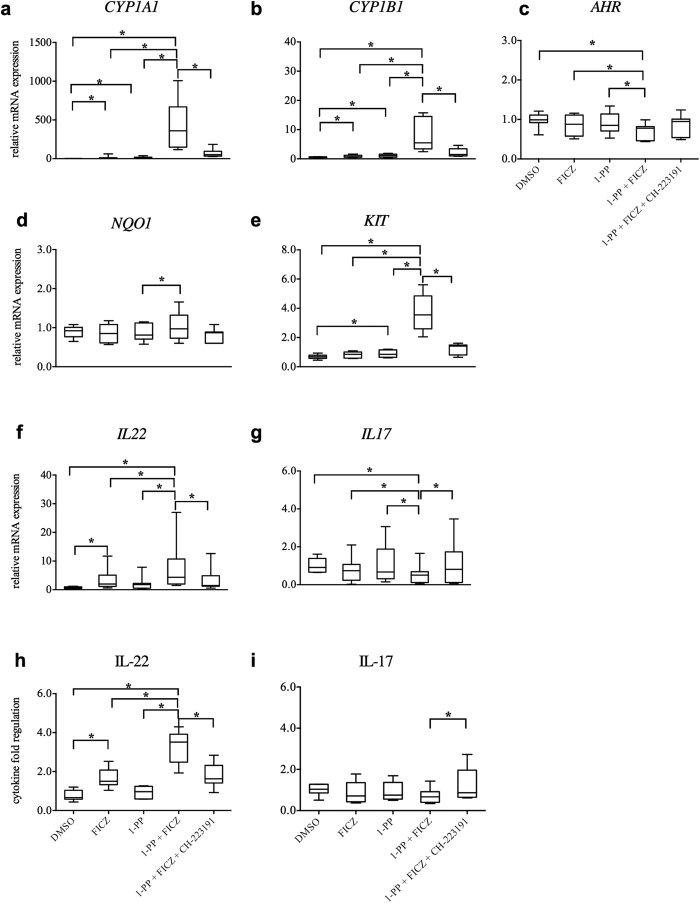 Inhibition of CYP1 activity regulates AHR pathway related targets in human PBMCs. Human PBMCs were activated with anti-CD3/28 antibodies and treated with the AHR agonist FICZ (0.5 nM), the CYP1 inhibitor 1-PP (1 μM) and the AHR antagonist CH-223191 (3 μM) for 5 days. Inhibition of CYP1 activity increased RNA levels of ( a ) CYP1A1 , ( b ) CYP1B1, ( d ) NQO1 , and the ( e ) KIT genes, and slightly down-regulated ( c ) AHR transcription levels. CYP1 inhibition also increased IL-22, but decreased IL-17 on RNA ( f and g ), and on protein ( h and i ) level. Supplementation with the AHR antagonist inverted CYP1-induced effects. RNA expression levels were analyzed by qRT-PCR. Expression values (C t values) were normalized by the housekeeping gene EF1A and related to the target gene expression in the medium control (ΔΔC t ). Data were expressed as 2 −( ΔΔCt ) indicating relative fold regulation. Boxplots show medians, interquartile ranges and ranges of seven different subjects (*p