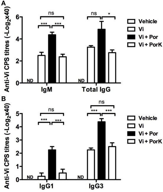 S . Typhi porins promote antibody responses to the T-independent anti-typhoid Vi antigen . Four BALB/c mice per group were immunized i.p. with 10 μg of Vi CPS vaccine (Typhim), Vi + 10 μg porins or Vi + 10 μg of PorK on days 0 and 15. (A) IgM and total IgG responses and (B) IgG1 and IgG3 responses against Vi CPS were measured by ELISA on day 20 post-immunization. Mean + SEM are plotted. These data are representative of two independent experiments. Statistical analysis was performed using one-way ANOVA with Bonferroni test post hoc . Statistical differences are depicted as * P