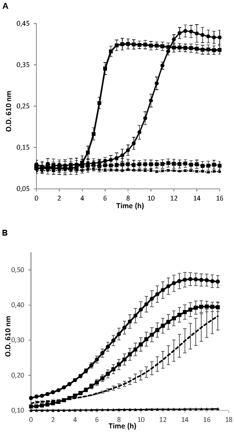 (A) Growth curves of the cariogenic bacteria Streptococcus mutans ATCC 25175 (squares) and S. sobrinus CECT 4034 (circles) in the presence (dotted lines) and absence (solid lines) of concentrated supernatant of S. dentisani strain 7746. (B) Growth curves of S. mutans ATCC 25175 in the presence of different size fractions of the 10× concentrated supernatant of S. dentisani 7746. Circles correspond to the fraction > 10 KDa, squares to the 3–10 KDa fraction, and triangles to the fraction