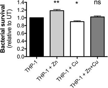 The effect of Zn and Cu on macrophage-mediated killing of A. baumannii . The survival of A. baumannii ATCC 17978 cells in the presence of THP-1 human monocyte-derived macrophages that were either treated with 50 μM Zn, 50 μM Cu or 50 μM Zn + 50 μM Cu was compared to survival of A. baumannii ATCC 17978 cells in the presence of untreated THP-1 cells. The data are the mean of biological triplicates (± SEM). Statistical analyses were performed using a two-tailed Student's t -test; ns = not significant, * = p