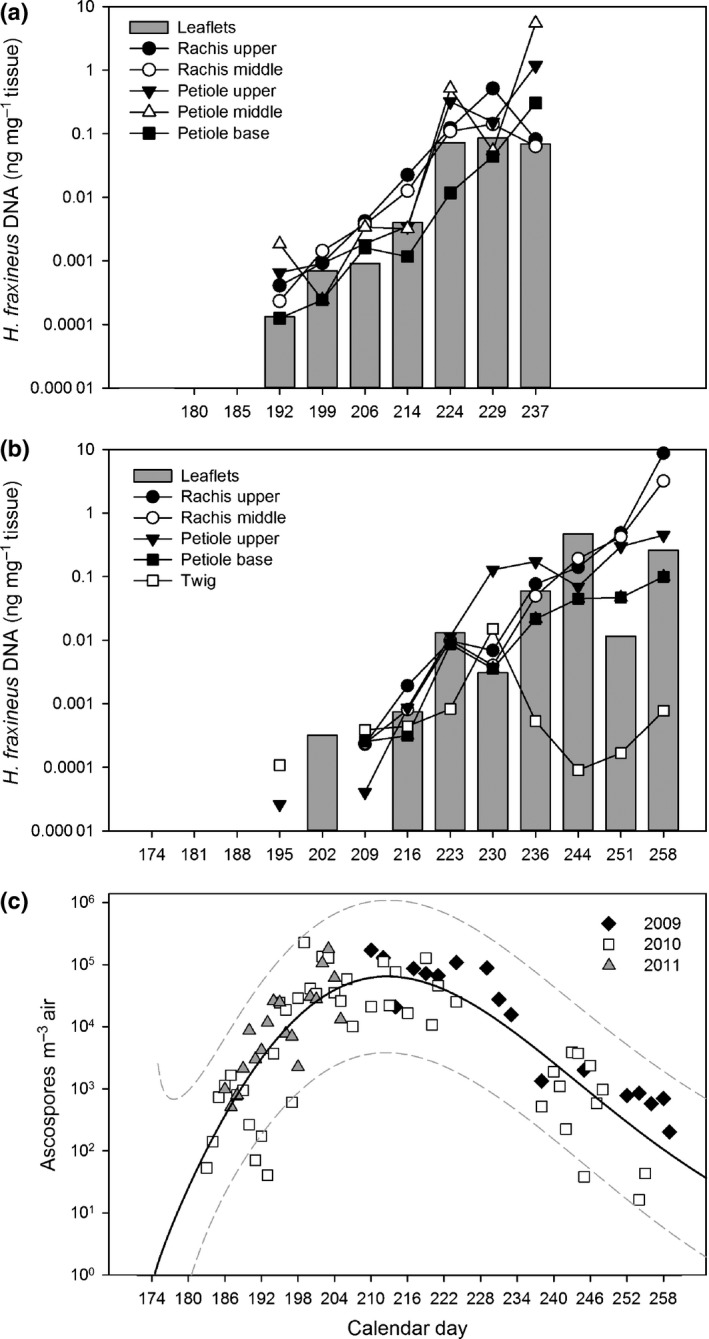 Hymenoscyphus fraxineus DNA amount in ash tissues (ng DNA mg –1 tissue) sampled throughout the summers of 2011 (a) and 2012 (b), and the amount of airborne pathogen ascospores at the experimental stand during 2009–2011 (c), either analyzed by a real‐time PCR assay specific to the DNA of the fungus or by microscopy (spore data). For leaflet tissues from 2011 and spores, the data are obtained from Hietala et al . ( 2013 ). Calendar days with missing values in (a) and (b) indicate that the fungus was not detected. Note that, for spores, the sampling covered only part of the sporulation season in 2009 and 2011. In panel (c) the continuous line indicates a model fitted to the data, while the dashed lines show 95% predictive intervals calculated as described in Supporting Information Methods S1.