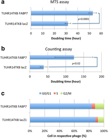 Effect of FABP7 on cell proliferation and cell cycle of TUHR14TKB cells. TUHR14TKB cells were cultured in RPMI 1640 medium containing 10% FBS, 5 mg/L blasticidin S HCl, 0.3 g/L G418, and 1 mg/L doxycycline hyclate. Assays to determine the rate of cell proliferation: a MTS assay. The data represent the average and standard deviation (error bars) of five experiments. b Cell counts. The data represent the average and standard deviation (error bars) of four experiments. c The stages of the cell cycles of TUHR14TKB FABP7 and TUBR14TKB lacZ were determined using flow cytometry