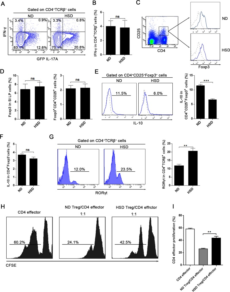 HSD does not alter T helper 1 (Th1) response but impairs the Th17:Treg balance A. and B. IL-17A-GFP mice were exposed to 3 weeks of ND or HSD before sacrifice, the proportion of IFN-γ + and GFP IL-17A + cells within the CD4 + TCRβ + SI LP lymphocytes were analyzed ( n = 6), data were acquired by intracellular staining from the SI LP lymphocytes which were incubated for 4 hr with PMA/Ionomycin and GolgiPlug. C. - G. Measurements of the SI LP cells that isolated from the mice on a ND or HSD diet for 3 weeks. C, the flow cytometric gating strategy for CD4 + CD25 + Foxp3 + Treg cells, the Foxp3 level was analyzed after gated on CD4 + CD25 + cells, in the right panel, dash line represent the Foxp3 isotype control and the solid line represent the Foxp3 staining. D, the summative data of the Foxp3 expression and the percentages of CD4 + CD25 + Foxp3 + Treg cells in the SI LP cells ( n = 8). E-F, the IL-10 production of the CD4 + CD25 + Foxp3 + cells and the CD4 + Foxp3 − cells, fresh isolated SI LP cells were incubated for 4 hr with PMA/Ionomycin and GolgiPlug before intracellular staining by True-Nuclear TM Transcription Factor Buffer Set. G, the RORγt level of the SI LP CD4 + TCRβ + cells ( n = 6). H-I, Treg suppression assay, the CD4 effector cells (CD4 + CD62L + CD44 − ) were sorted from mice exposed to 3 weeks of ND, the CD4 + CD25 + Treg were sorted from mice exposed to 3 weeks of ND or HSD, CD4 effector cells were labeled with CFSE, stimulated with CD3/CD28 Dynabeads and cultured alone or co-cultured with Treg at ratios as indicated (with IL-2). H. CFSE dilution of CD4 effector cells was measured by flow cytometry after 3.5 days, and CFSE dilution was obtained after gating on CD62L + cells (CD4 effector cells). I. Summary of the proliferation rate of the CD4 effector cells. Data are expressed as mean ± SEM from three independent experiments.
