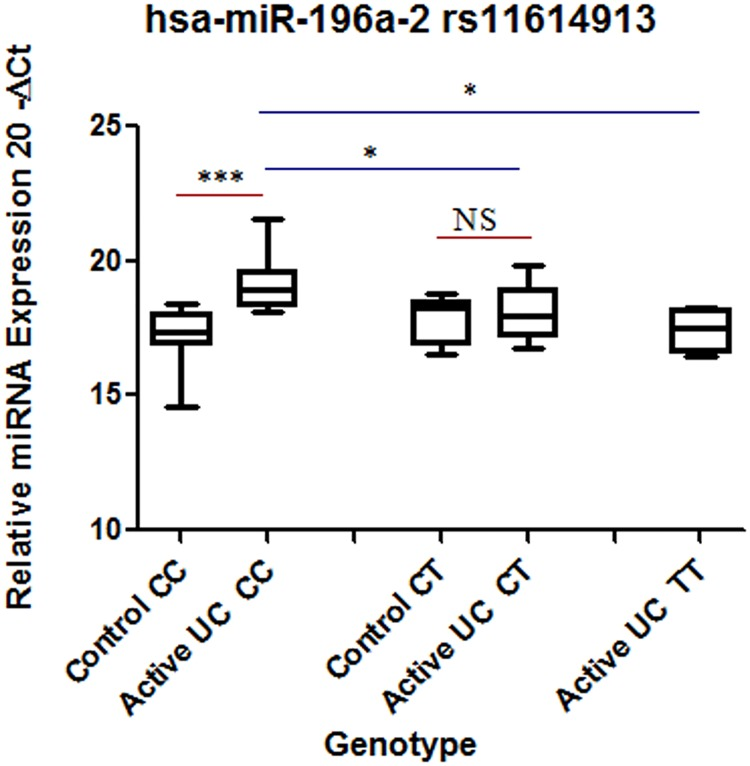 Comparison of hsa-miR196a-2 expression at genotype level between controls and patients. Total RNA was isolated from colon biopsy samples from healthy subjects and UC patients and reverse transcribed to cDNA using specific primers. Data were derived from quantitative real-time PCR. Normalization of samples was performed with the U6 snRNA. Sample size was 8–12 samples in homozygous CC and heterozygous CT in each category. For homozygous mutant n = 4 for UC. Box plots present median ± 25th and 75th percentiles (solid box) with the lowest and highest percentiles shown by whiskers outside the box. The Ct values were subtracted from 20, so higher values represented higher mRNA expression levels. Significance values are represented as * p ≤ 0.05, *** p ≤ 0.001.