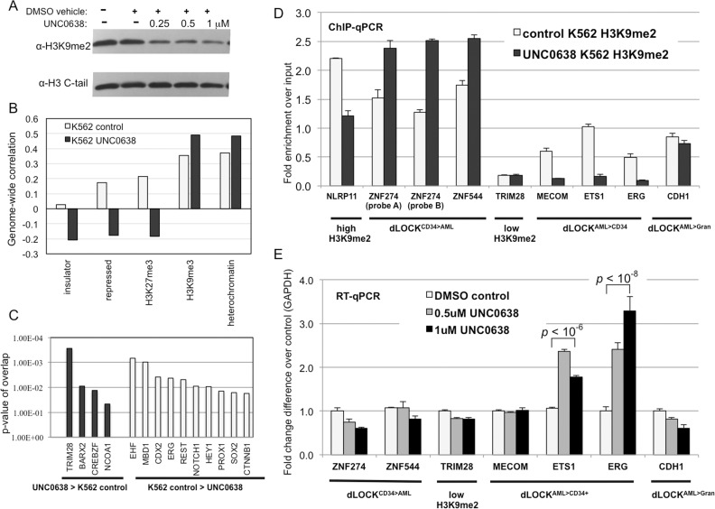 Inhibition of G9a/GLP in K562 decreases H3K9me2 levels and activates genes within AML-enriched transient H3K9me2 blocks. A: Western blotting probed with antibodies against H3K9me2 and unmodified histone H3 show decreasing levels of H3K9me2 in K562 cells treated with G9a/GLP inhibitor UNC0638. B: Graphs showing correlations between H3K9me2 domains in control and 1 μM UNC0638-treated K562 cells vs. selected biodata with top discriminatory power (insulator, repressed chromatin, H3K27me3, H3K9me3, and heterochromatin). C: Ingenuity pathway analysis showing upstream regulators associated with the dLOCK UNC0638 > K562control and dLOCK K562control > UNC0638 . D: H3K9me2 levels determined by <t>ChIP-qPCR</t> in control and UNC0638-treated K562 cells for selected gene probes representing dLOCK CD34+ > AML ( ZNF274 , ZNF544 ), constitutively high H3K9me2 ( NLRP11 ), constitutively low H3K9me2 ( TRIM28 ), dLOCK AML > CD34+ ( MECOM , ETS1 , ERG ) and dLOCK AML > Gran ( CDH1 ). E: <t>RT-PCR</t> analysis of gene expression level in control and UNC0638-treated K562 cells for selected gene probes representing dLOCK CD34+ > AML ( ZNF274 , ZNF544 ), constitutively low H3K9me2 ( TRIM28 ), dLOCK AML > CD34+ ( MECOM , ETS1 , ERG ) and dLOCK AML > Gran ( CDH1 ). p– values represent Student's t-test for 2 tailed, unpaired equal variance.