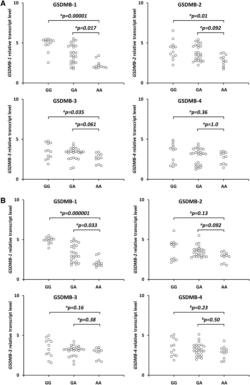 Effect of the GSDMB rs8067378 polymorphism on GSDMB1–4 isoform transcript levels in cancerous cervical tissues ( a ) and non-cancerous tissues ( b ). Frozen tissue was homogenized, followed by total RNA isolation. Quantitative analyses of GSDMB transcript levels were performed by quantitative real-time polymerase chain reaction using the SYBR Green I system. The quantity of GSDMB transcript levels in each sample was standardized by the geometric mean of references using hydroxymethylbilane synthase and β-2-microglobulin cDNA levels. Kruskal–Wallis test with a Dunn's post-hoc or b Tukey's post-hoc test. GSDMB gasdermin B