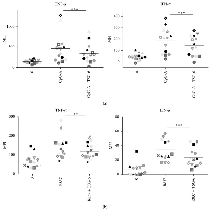 TSG-6 exerted the same suppressive effect on pDCs from healthy donors stimulated with CpG-A or R837. PBMC from 14 healthy blood donors were isolated and treated with TSG-6 (1000 ng/mL) overnight, followed by CpG-A (2 μ M) (a) or R837 (10 ng/mL) (b) for 5 hours. The cells were stained with the cell surface markers as indicated, fixed, and permeabilized, followed by staining with APC-conjugated anti-IFN- α and FITC-conjugated anti-TNF- α antibodies. PBMCs were gated for pDCs as defined in the gating strategy (Supplementary data S2). MFI, mean fluorescence intensity. Error bars indicate SEM. Wilcoxon matched-pairs signed rank test was used to determine statistical significance. ∗∗ p