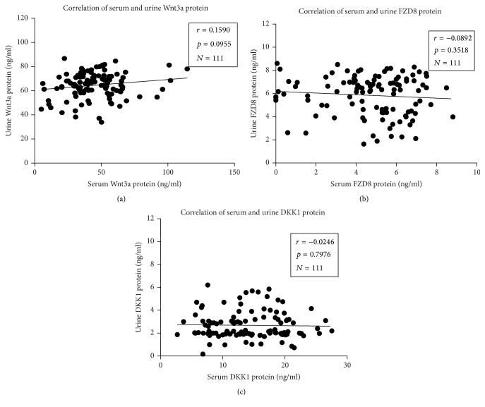 Correlations between serum and urine concentrations of Wnt-3A, FZD-8, and DKK-1. (a) Correlation between Wnt-3A protein levels in serum and urine. (b) Correlation between FZD-8 protein levels in serum and urine. (c) Correlation between DKK-1 protein levels in serum and urine. No significant correlation was determined between the serum and urine for all the three tested proteins. Spearman r and p values are displayed on each graph. A p value was determined by the two-tailed Pearson correlation test.