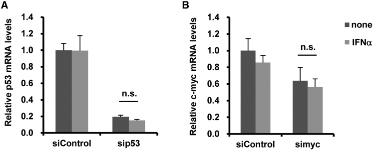 Knockdown Efficiencies of Chemically Synthetic siRNAs following IFN-α Stimulation (A and B) A549 cells were transfected with siControl, sip53 (A), or simyc (B), followed by treatment with recombinant IFNα at 10 4 U/mL. After 48-hr incubation, c- myc and p53 mRNA levels in the cells were determined by qRT-PCR. All data are expressed as the means ± SD (n = 4).