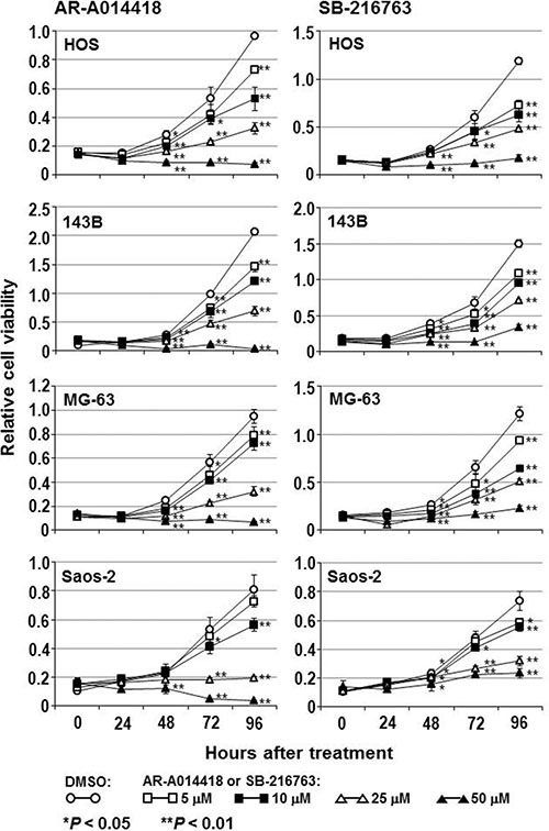 Effect of small-molecule GSK-3β inhibitors on the survival of osteosarcoma cells The osteosarcoma cells were treated with DMSO or the indicated concentrations of AR-A014418 or SB-216763 for the designated times. The relative number of viable cells at each time point was measured by the WST-8 assay. Values shown are the means ± SD of six separate experiments.