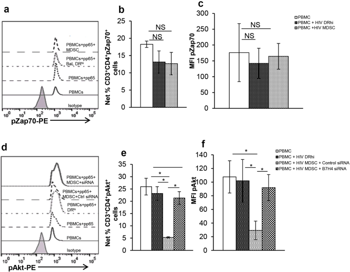 B7-H4 down regulates pAkt to regulate CMV induced T cell activation. To determine the effect of HIV MDSC on CMVpp65 induced pZap70 or pAkt, PBMCs of CMV(+) HIV(−) donors were cultured with or without non-infectious HIV BaL (p24, 12 ng/10 7 cells). After 5 days, cells were stained with anti -CD11b, -CD33, CD14, HLA DR; DR hi and MDSC were sorted. (a–c) Sorted cells and freshly isolated autologous PBMCs were cultured in a ratio of 1:2 (1 sorted cell: 2 PBMCs) with or without CMVpp65 for 15 min. pZap70 was determined as detailed in Methods section. (a) Representative flow cytometry histogram plot is shown, (b) pZap70 expressed as %Net CD3 + CD4 + pZap70 + cells and (c) MFI of pZap70 in CD3 + CD4 + cells was determined. (d–f) Sorted MDSC were transfected with control or B7-H4 siRNA (75 nM) using Lipofectamine RNAiMAX reagent (Invitrogen); HIV DR hi cells were cultured in presence of Lipofectamine RNAiMAX reagent used for transfecting MDSC. After 48–72 hrs, transfected cells and freshly isolated autologous PBMCs were cultured in a ratio of 1:2 (1 sorted cell: 2 PBMCs) with or without CMVpp65 peptide pool for 15–30 min pAkt was determined as above. (d) Representative flow cytometry histogram plot is shown, (e) pAkt expressed as %Net CD3 + CD4 + pAkt + cells and (f) MFI of pAkt in CD3 + CD4 + cells was determined. Histograms are presented as mean+/−SD; n = 4 donors. *p