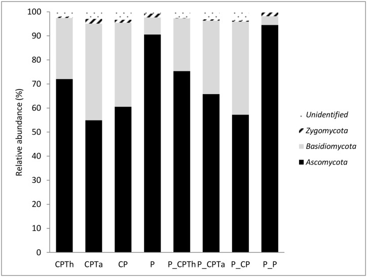 Composition of fungal communities at phylum level of each treatment after harvesting. (CPTh): compost and black peat fortified with T . harzianum ; (CPTa): compost and black peat fortified with T . asperellum (CP): compost and black peat (P): peat. Treatments with the letter P_ ahead were the same but inoculated with P . nicotianae .