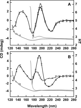 Effect of Rehydration on the SRCD Spectra of Protein Films. Black solid lines are dehydrated films, gray solid lines are resolubilized films, and dashed lines are HT spectra in the same respective colors as Figure 2. (A) Concanavalin A (globular) and (B) β‐synuclein (IDP).