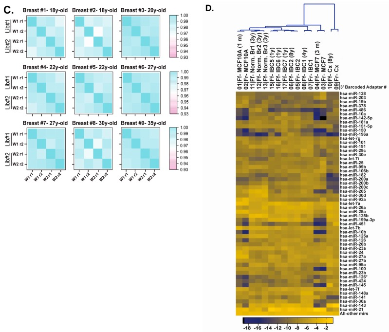 Evaluation of the reproducibility of the barcoded cDNA library preparation procedure. ( A ) Unsupervised clustering of miRNA expression from two-year-old breast cancer #3, three-year-old breast cancer #4 and the 35-year-old benign breast tissue specimens (200, 100 and 50 ng total RNA in duplicates for each specimen); ( B ) Correlation matrices displaying reproducibility between repeats and between different RNA amounts for all three specimens; ( C ) Correlation matrices displaying reproducibility for nine FFPE RNA benign breast tissue specimens. Duplicate measures were performed within the same library (Repeat 1 (r1) and repeat 2 (r2) and between libraries (Lib#1 and Lib#2) prepared at week 1 (w1) and week 2 (w2)) for 18-, 20-, 22-, 27-, 30-, 35-year-old tissues; ( D ) Unsupervised clustering of miRNA expression data from five pairs of matched fresh or frozen and FFPE specimens and six FFPE specimens. The matched pairs include fresh and one-month-old MCF10A FFPE RNA, fresh and three-month old MCF7 FFPE RNA, frozen and four-year-old invasive breast Tumor 1 (IBC1) FFPE RNA, frozen and eight-year-old invasive breast Tumor 2 (IBC2) FFPE RNA, frozen and eight-year-old normal cervix FFPE RNA. The FFPE specimens include three distinct three-year-old normal breast FFPE RNAs (from three different individuals; F ormalin- f ixed normal br east Ff-Norm-Br#1, #2, and #3) and three distinct one-year-old invasive breast cancer FFPE specimens from three different individuals ( F ormalin- f ixed I nvasive B reast C ancer Ff-IBC#3, #4, and #5). The top 75% miRNAs detected by sequencing are represented.